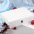 Подарок Ягодные снежки