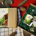 Корпоративный подарок Кедровка