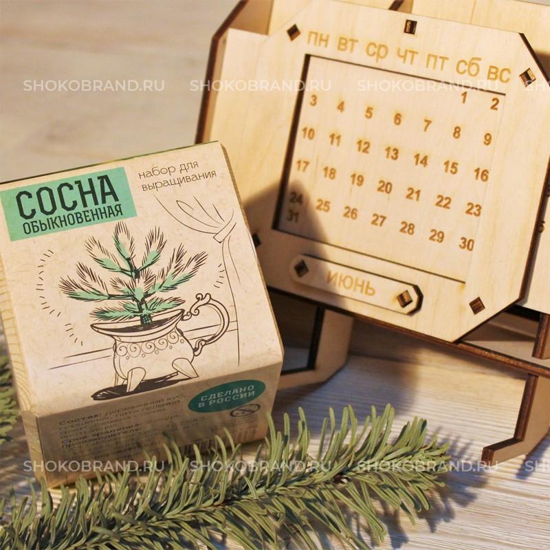 Корпоративный подарок Органайзер с экокубом